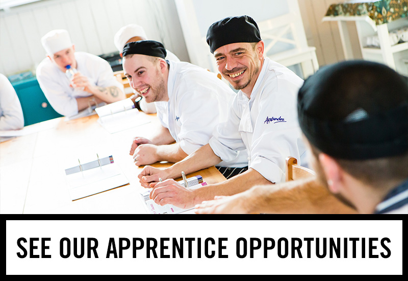 Apprenticeships at Shandwick's